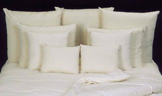 Milwaukee Pillow Cleaning Services